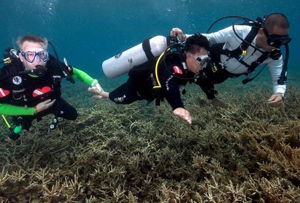 Permintaan pelancongan marin semakin meningkat - Tourism Malaysia